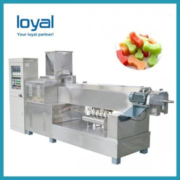 Automatic Single Twin Screw Extruder Stainless Steel Pet Dog Chew Treat Extruder Machine